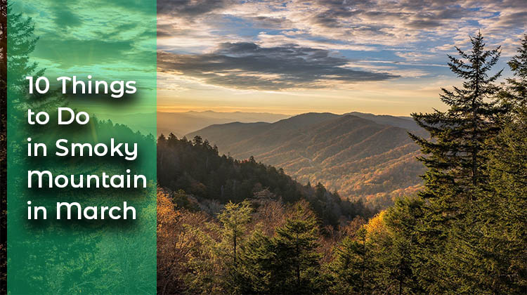Things to Do in Smoky Mountain in March