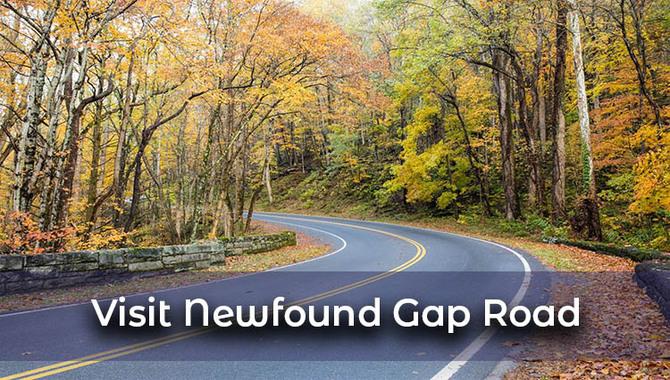 Visit-Newfound-Gap-Road
