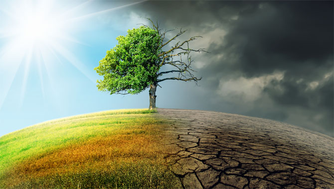 5.Climate Change