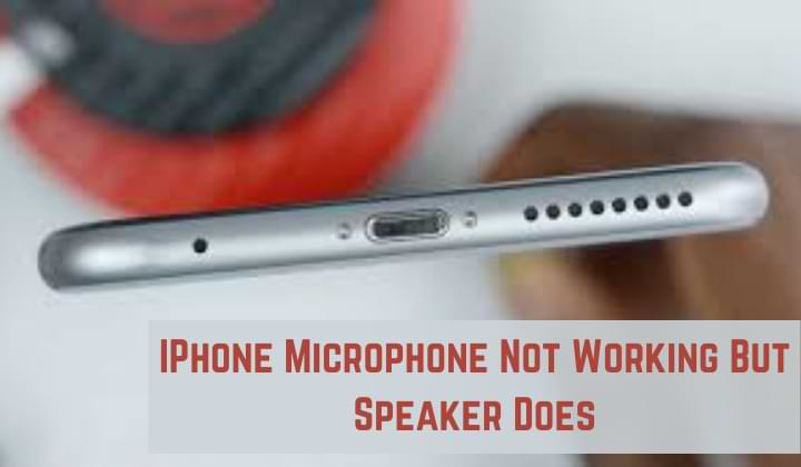 IPhone Microphone Not Working But Speaker Does
