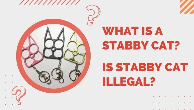 What is a Stabby Cat Is Stabby Cat Illegal